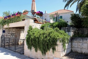 villa maruka street view-(2 of 1)